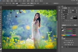 Photoshop/PS软件