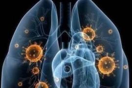 武汉新型冠状病毒肺炎对我们的影响