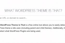 如何查看WordPress网站使用的主题